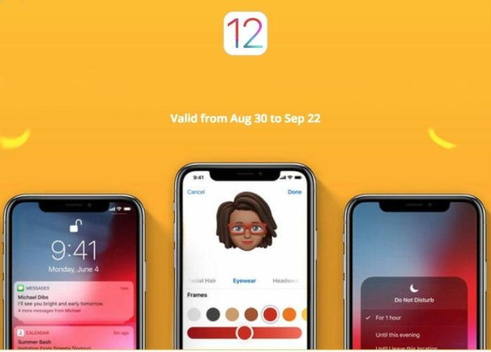 Offerta del Ringraziamento: solo 5$ per iMyFone D-Port, fa il backup di iPhone