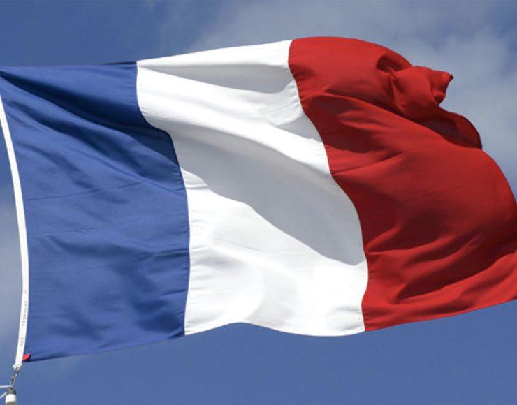 apple in francia - foto Bandiera Francese
