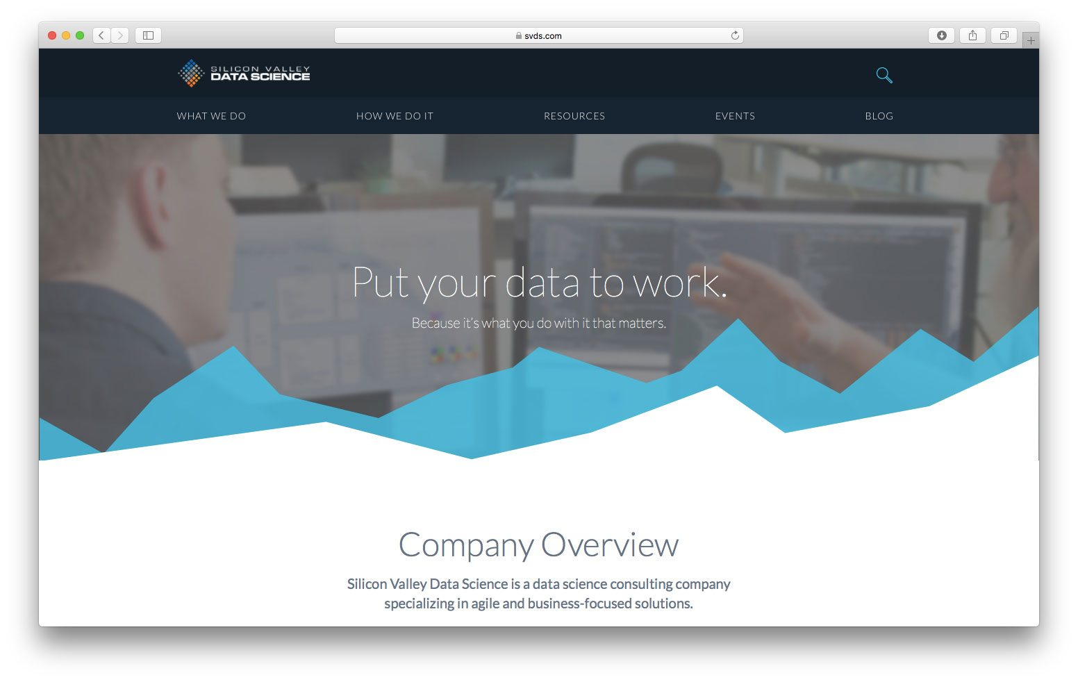 Il sito web di Silicon Valley Data Science (SVDS)