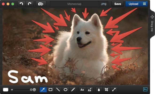 Esempio di screenshot catturato con Monosnap