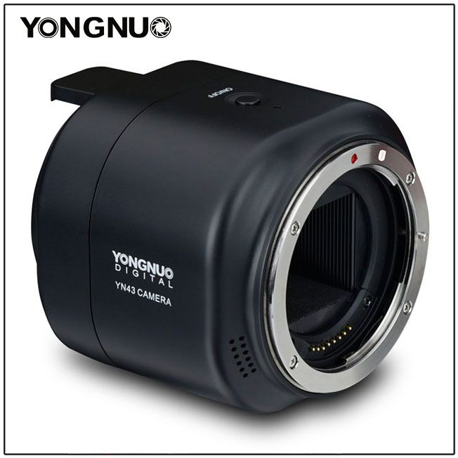 Yongnuo YN43
