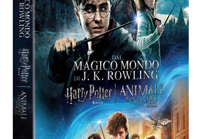 cofanetti dvd harry potter