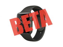 beta di watchOS