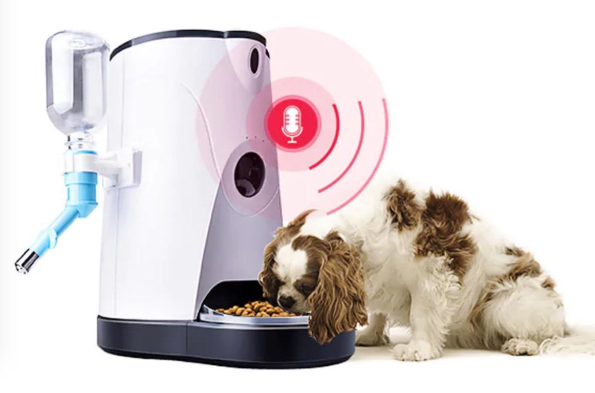 Smart Pet Feeder, il dispenser per la pappa degli amici a 4 zampe