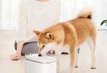 Da Xiaomi Youpin ecco il dispenser d'acqua per animali dal prezzo democratico