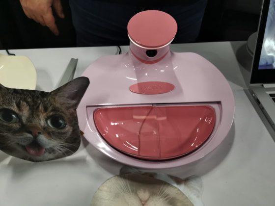CES 2019, Mookkie è la ciotola smart per animali domestici creata in Italia