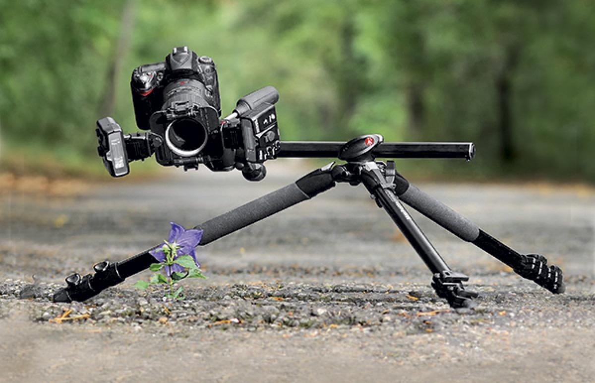 fotografia macro