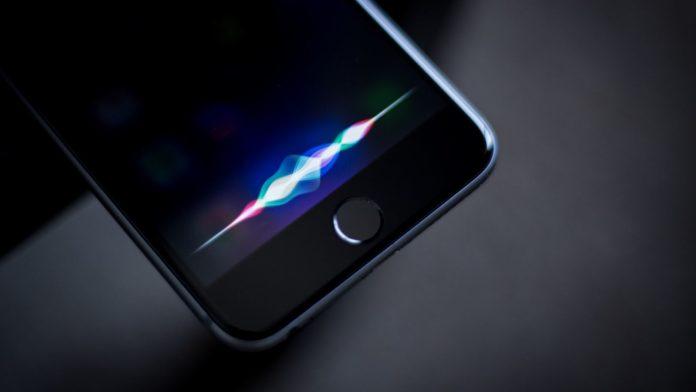 Siri, voglio fare una strage: subito arrestato