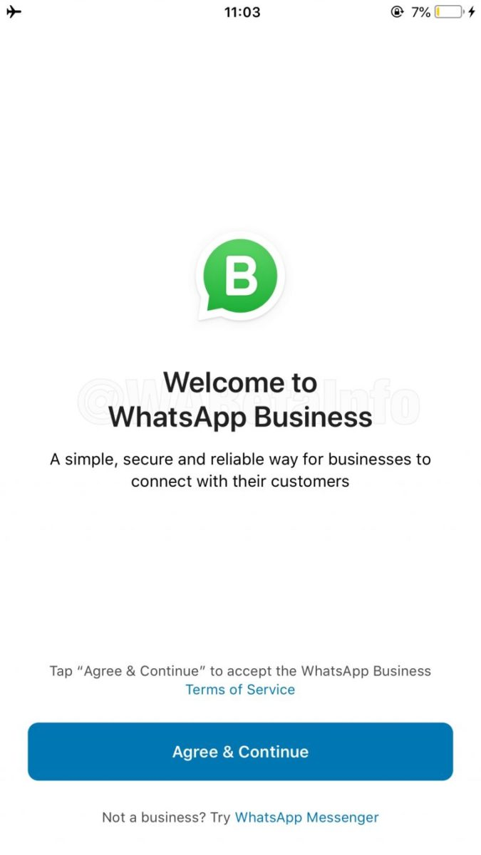 WhatsApp Business arriva su iOS in versione beta