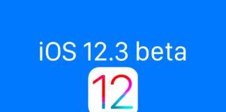 Beta iOS 12.3