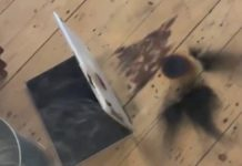 Frittura di MacBook Pro, ripreso in video mentre va a fuoco