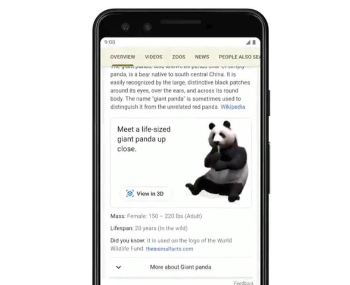 Google risponde in Realtà Aumentata alle ricerche sugli animali