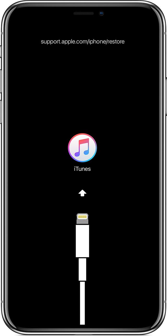 iPhone USB-C avvistato in iOS 13 ma non fate subito festa