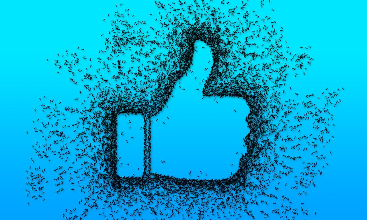Sentenza UE: i siti con il pulsante Facebook Mi Piace sono avvertiti