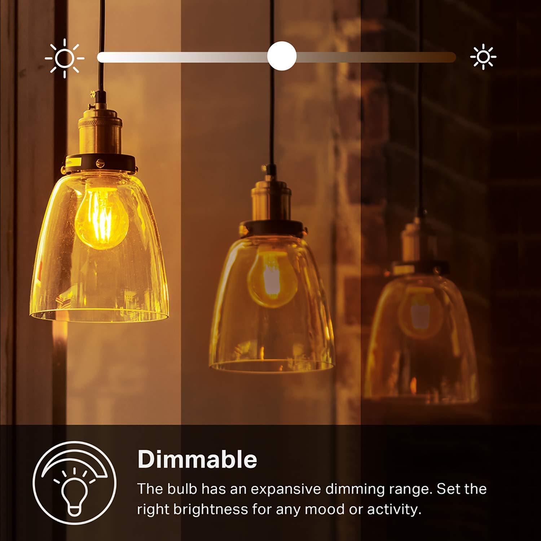 Su Amazon la lampadina a filamento TP-Link compatibile con Alexa e