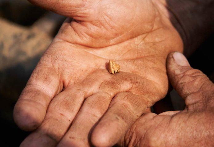 L'oro di Apple è più sostenibile: arriva da cercatori che rispettano l'ambiente