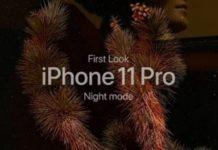 La magia della modalità notte di iPhone 11 Pro nel video di Apple