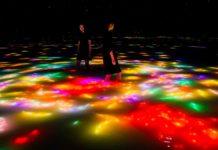 Tokyo, nel museo teamLab Planets le carpe virtuali nuotano in superficie e si trasformano in foglie autunnali