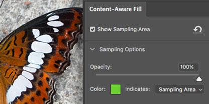 """Adobe mostra novità dello strumento """"Riempimento in base al contenuto"""" di Photoshop"""