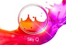 Da oggi Sky Q si vede con fibra di casa, senza parabola