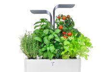 Da Véritable gli orti interni per coltivare a casa gli alimenti, in Italia con Attiva