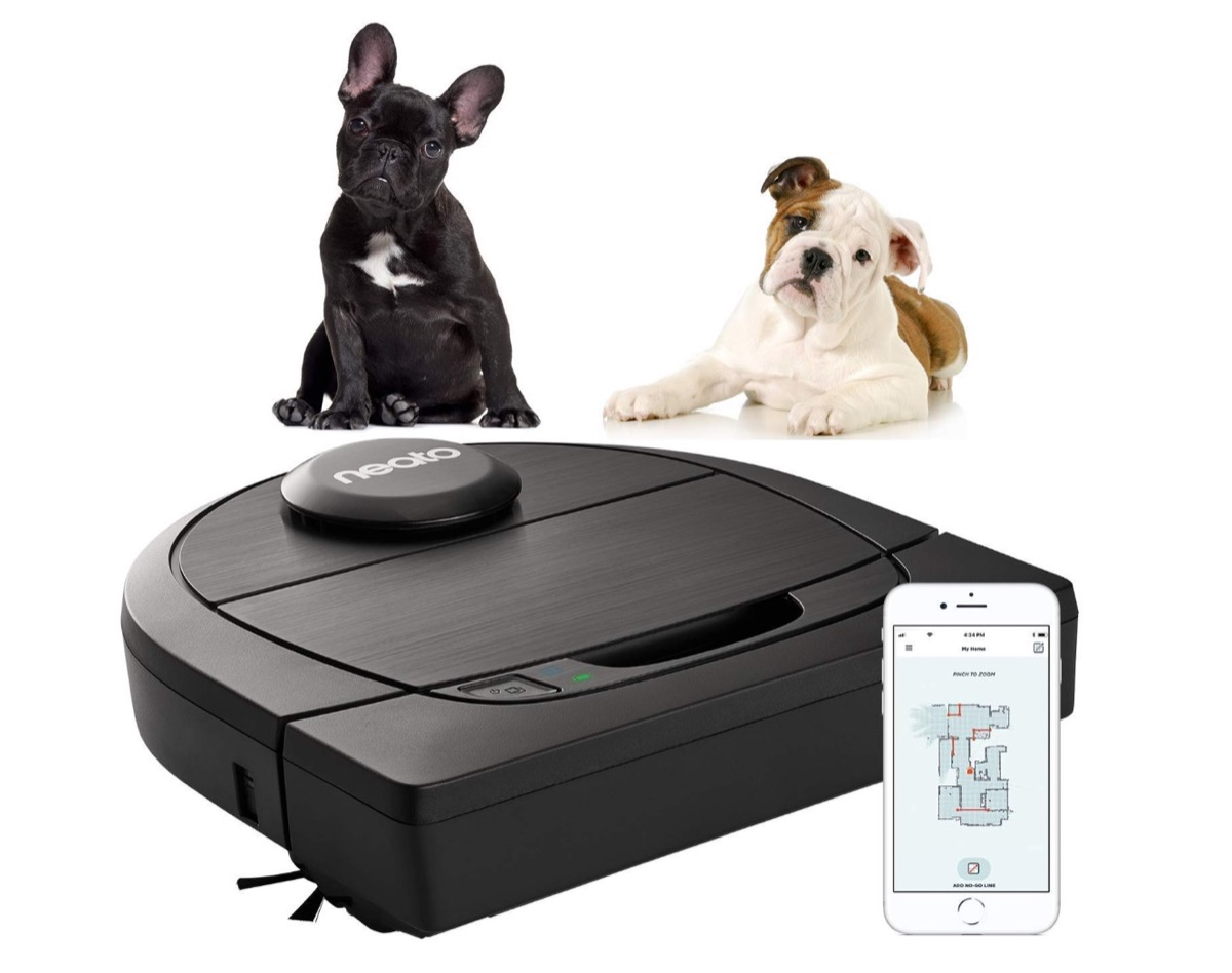 Neato Botvac D650 Connected Premium Pet Edition in super-offerta Cyber Monday