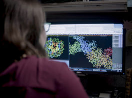 Microsoft ha annunciato AI For Health, l'intelligenza artificiale al servizio della ricerca medico scientifica