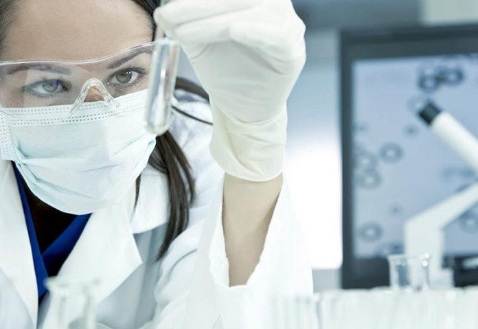 La canadese Medicago ha annunciato la produzione di un candidato vaccino affidabile contro il COVID-19