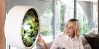 Rotofarm: su indiegogo il giardino indoor ispirato alla NASA
