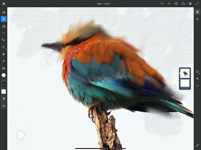 Un bundle con Photoshop e Adobe Fresco Premium per iPad e altre promo da Adobe