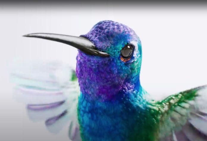 Nel video Apple Float un colibrì sfoggia iPad Pro con Magic Keyboard
