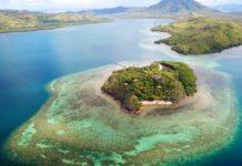 L'Intelligenza Artificiale per salvare le barriere coralline