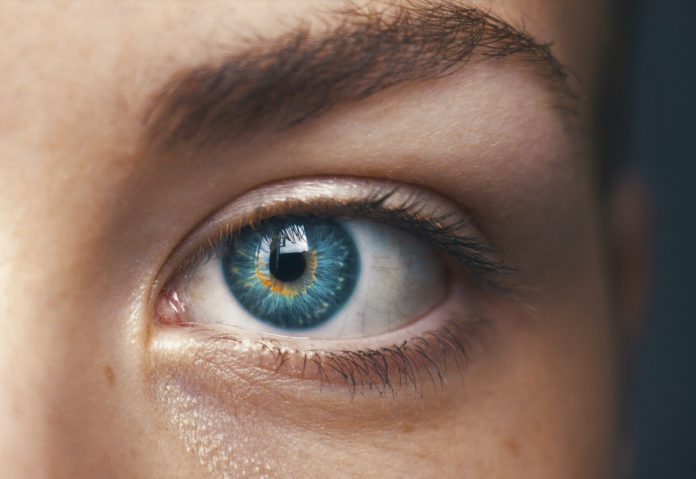 Sempre incollati davanti agli schermi? Le precauzioni contro la malattia dell'occhio secco