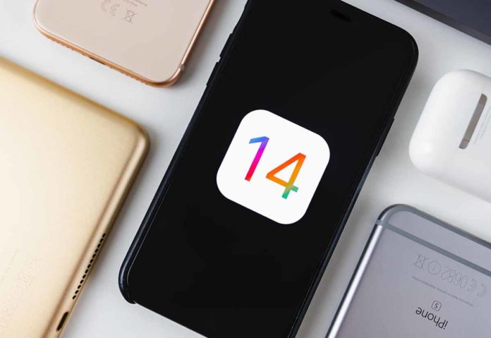iOS 14 con traduttore integrato in Safari e supporto Apple Pencil per i siti web