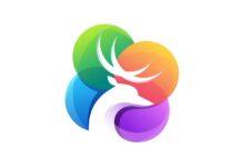 Pyte è il primo marketplace italiano dedicato al lavoro