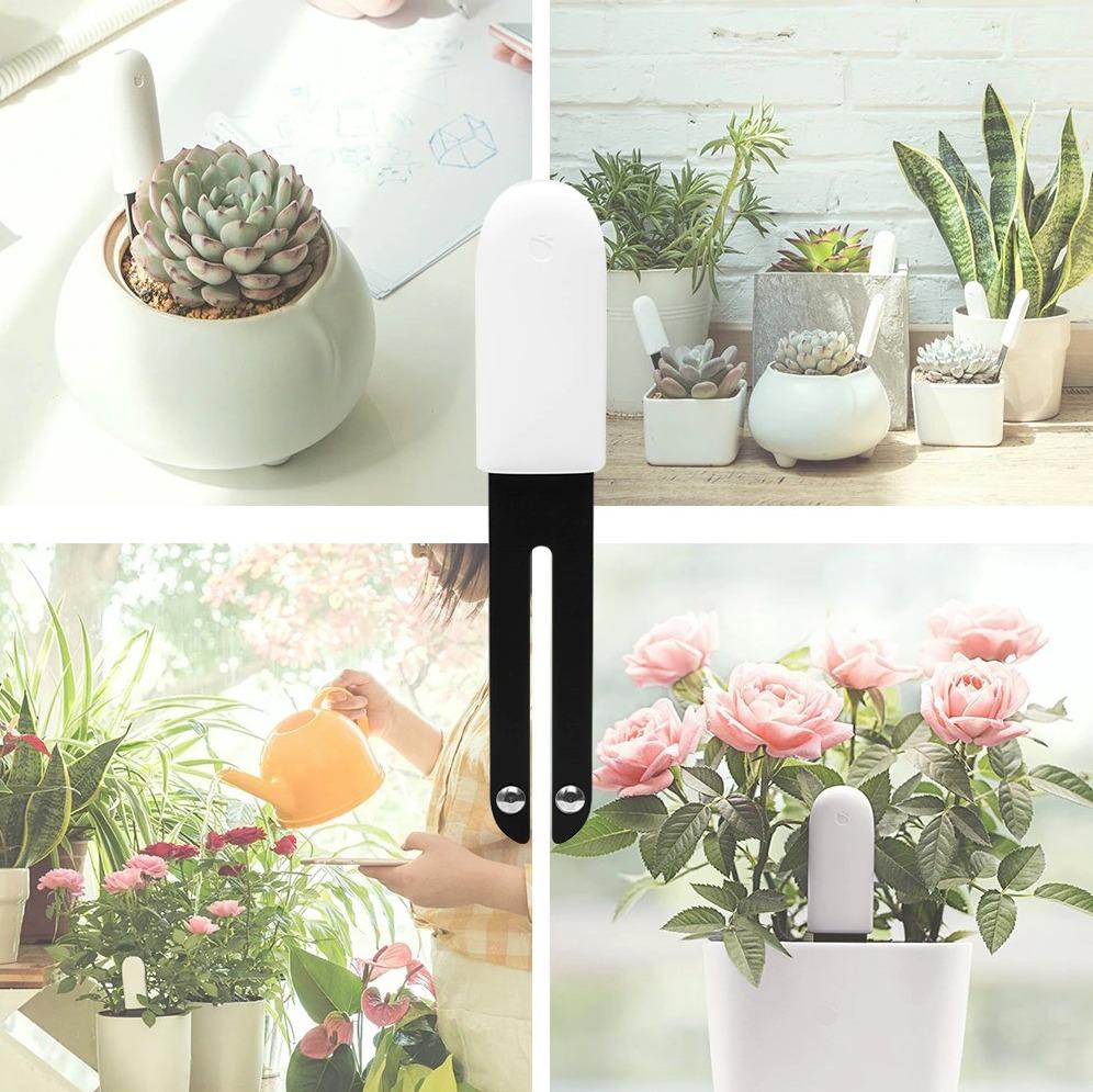 """Xiaomi Mi Flora, il """"giardiniere"""" smart che aiuta vi fa venire il pollice verde"""