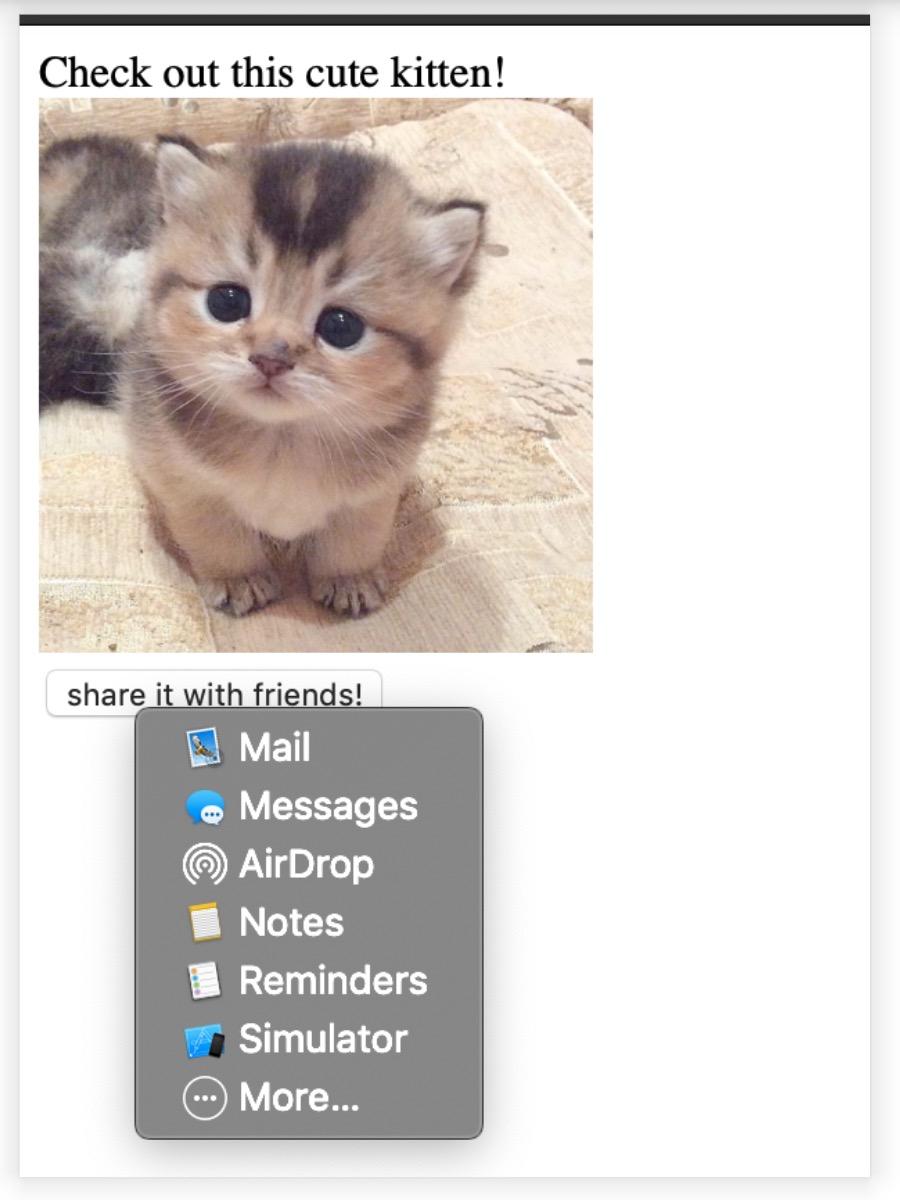 Privacy, la cronologia di Safari a rischio su iOS 13 e macOS Catalina