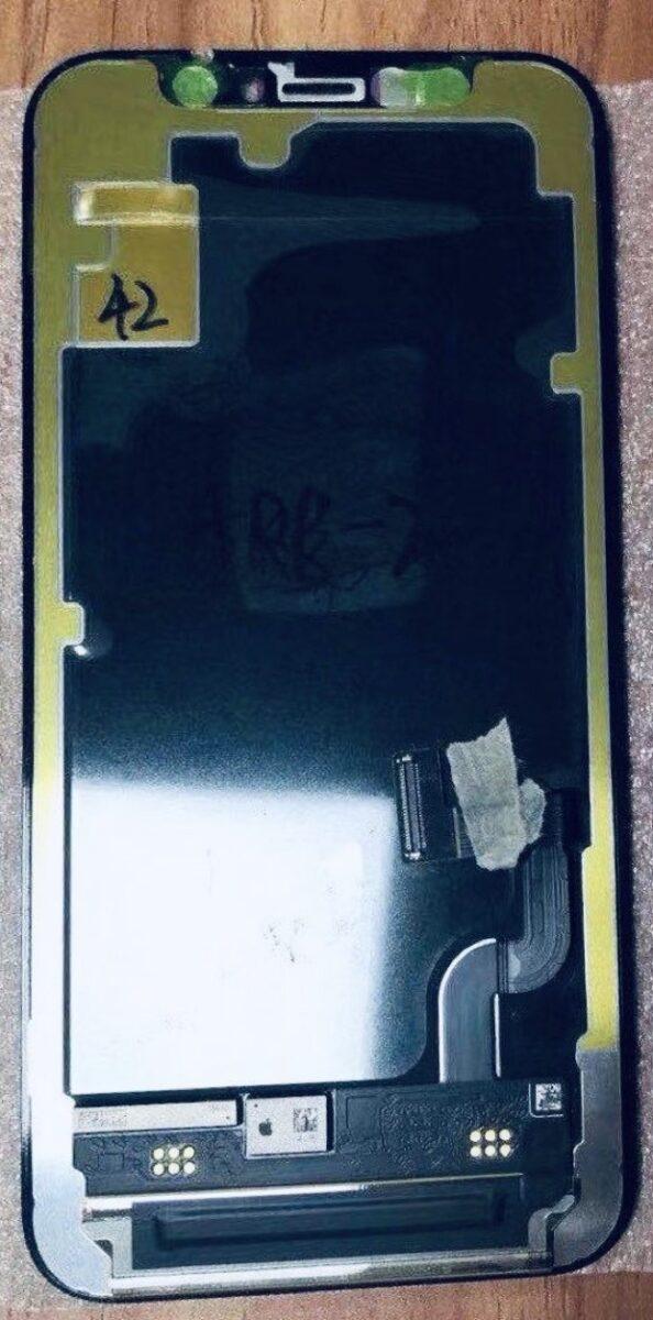 In foto il presunto schermo OLED di iPhone 12