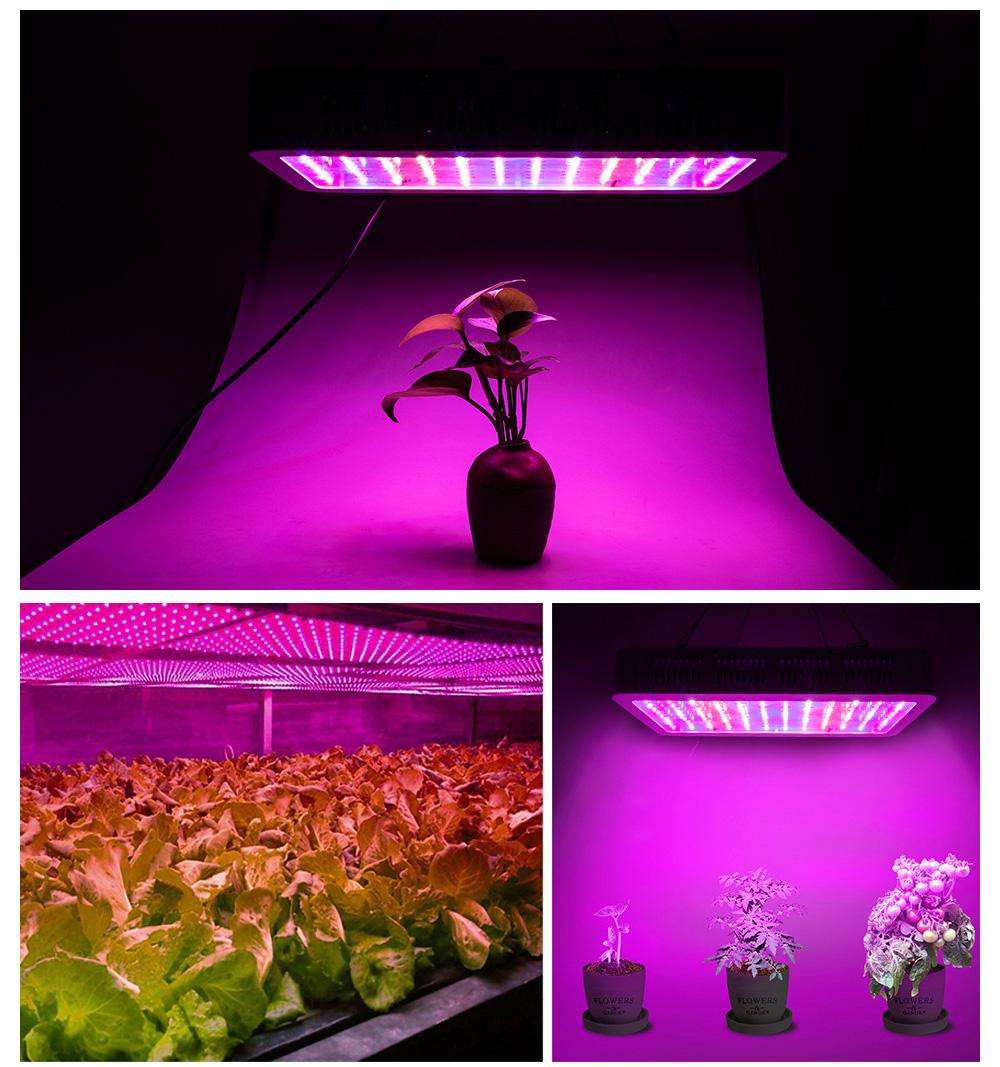 GR0015, la luce per far crescere le piante in casa in offerta con coupon a 51,59 euro