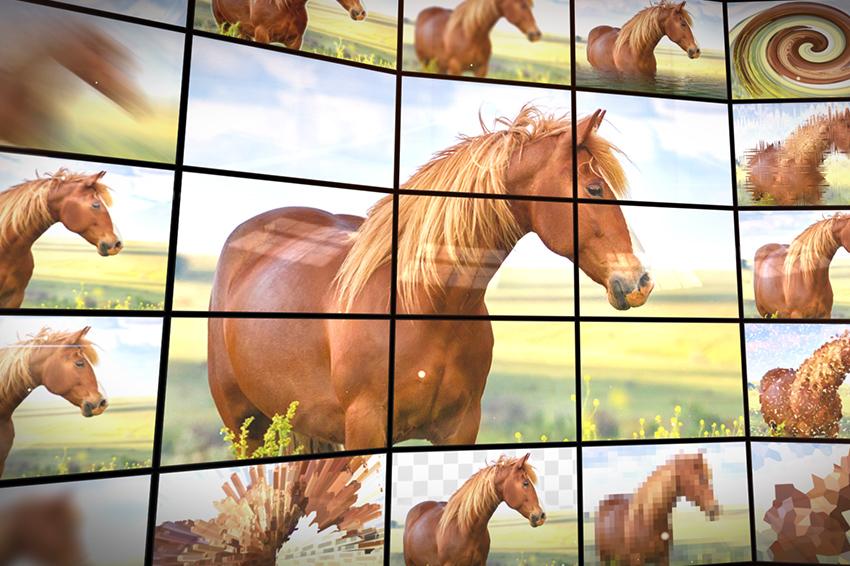 AliveColors 2.1, aggiornato il software Mac e PC per il ritocco delle foto