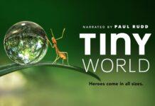 """""""Tiny World"""", ecco il primo strabiliante trailer del documentario di Apple TV+"""