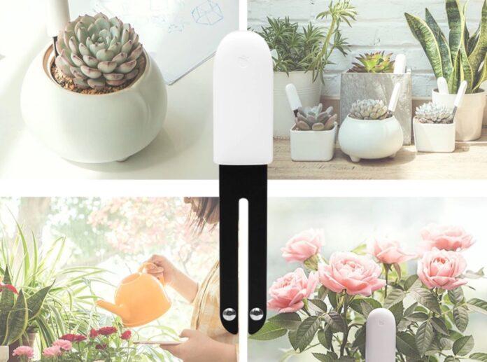 Cinque motivi per acquistare il giardiniere tech Xiaomi Mi Flora