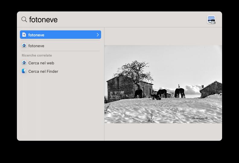 macOS Big Sur, come ottenere l'anteprima delle immagini in Spotlight