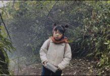 Apple: un cortometraggio girato con iPhone 12 Pro Max per celebrare il Capodanno cinese