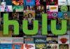 Apple ha permesso ad Hulu e altri sviluppatori accesso ad API riservate